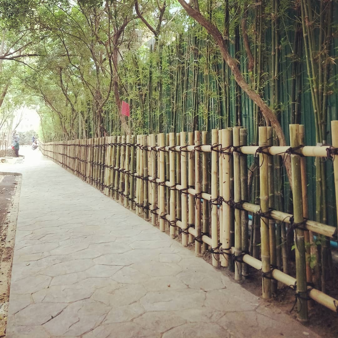 Design Plaited Bamboo Fence